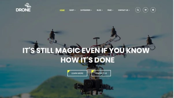 wp themes drones